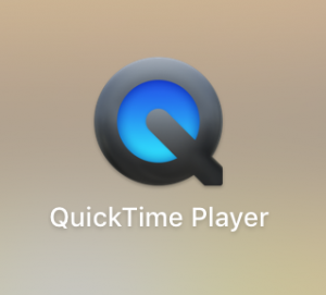 quick time player mom blog from home