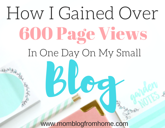 How I Gained over 600 Page Views in One Day on My Small Blog