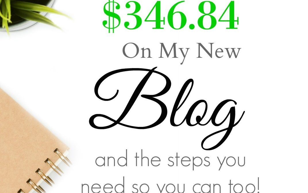 How I Made $346.84 On My New Blog and the Steps You Need So You Can Too