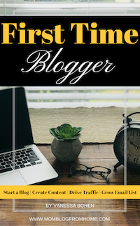 First Time Blogger - mom blog from home